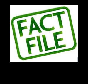 face file